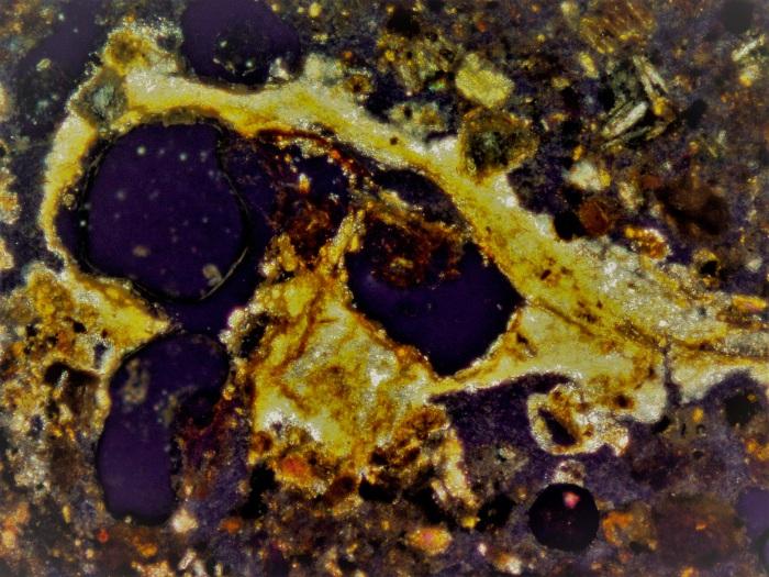 6 Micrograph